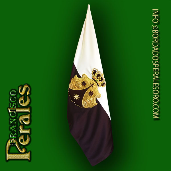 Bandera Modelo 02