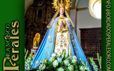Manto bordado para Nuestra Señora de la Asunción de la Hermandad de Jesús de Medinaceli de Herencia en Ciudad Real.